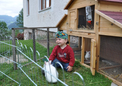 Ferienhof Berger Urlaub am Bauernhof Tiere 1